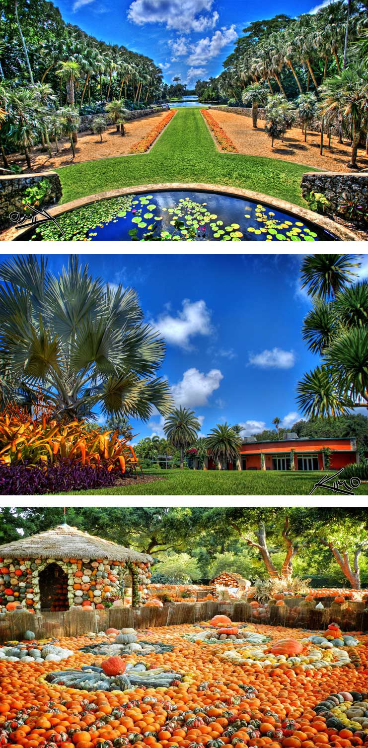 Fairchild Tropical Botanic Garden: Coral Gables