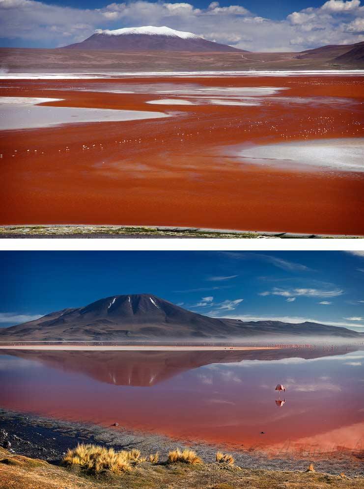Красное озеро Боливия