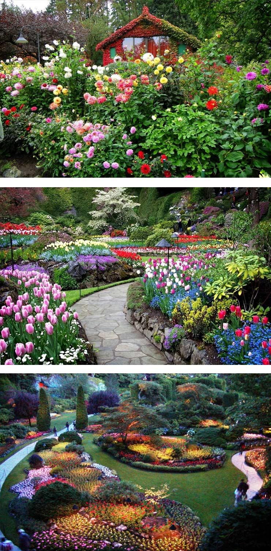 Сады-Будхарт