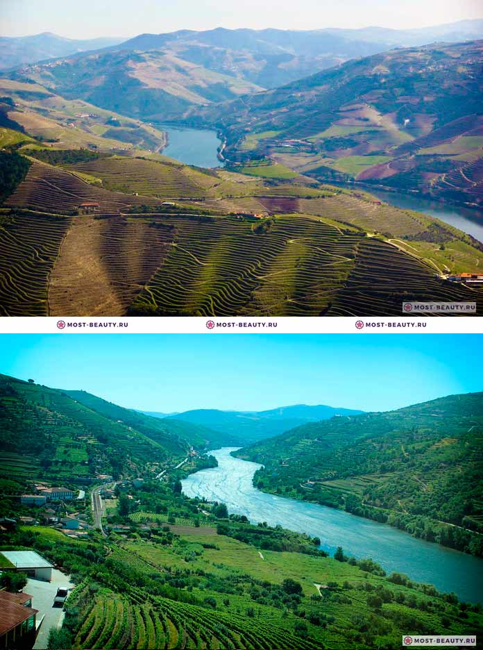 Самые красивые места Европы: Долина Дору (CC0)