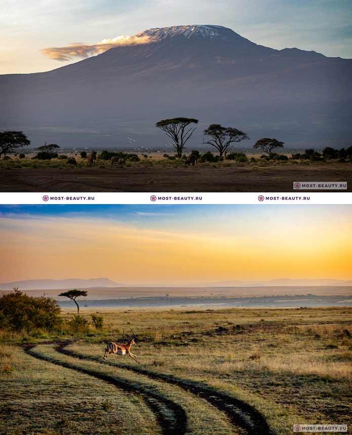 Кения природа