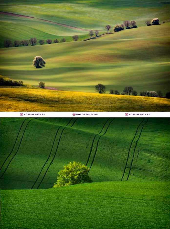 Самые красивые места Европы: Моравские поля