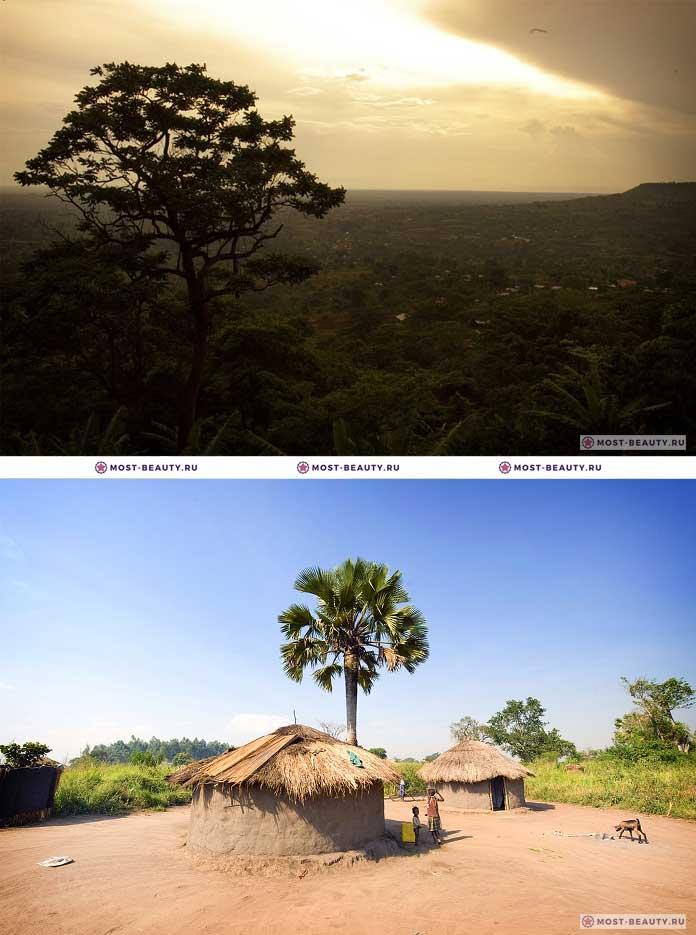 Самые красивые страны: Природа Уганды (CC0)