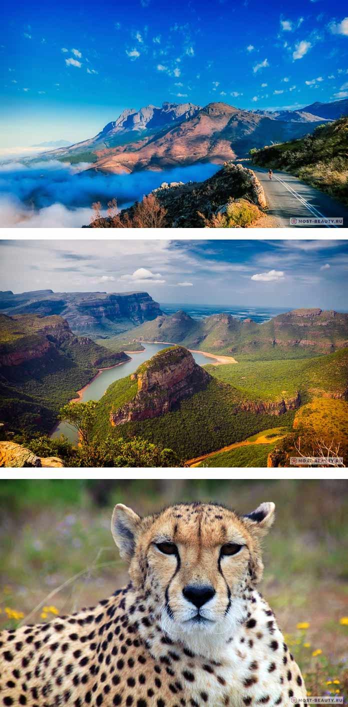 Природа ЮАР (CC0)