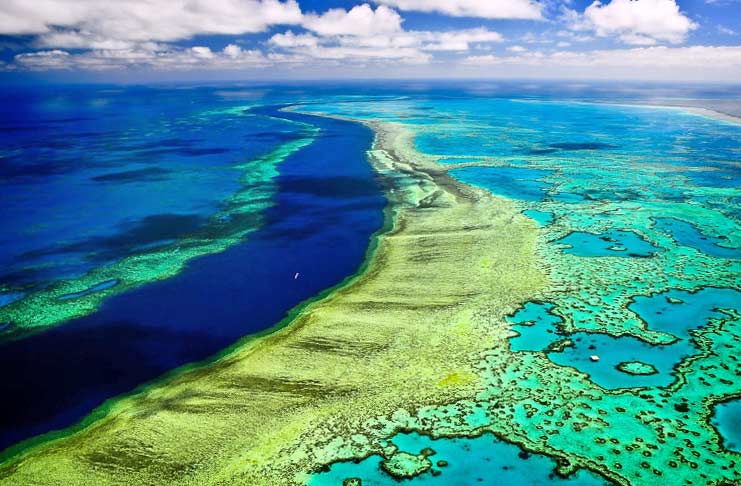 Самые красивые места на море: Коралловый риф