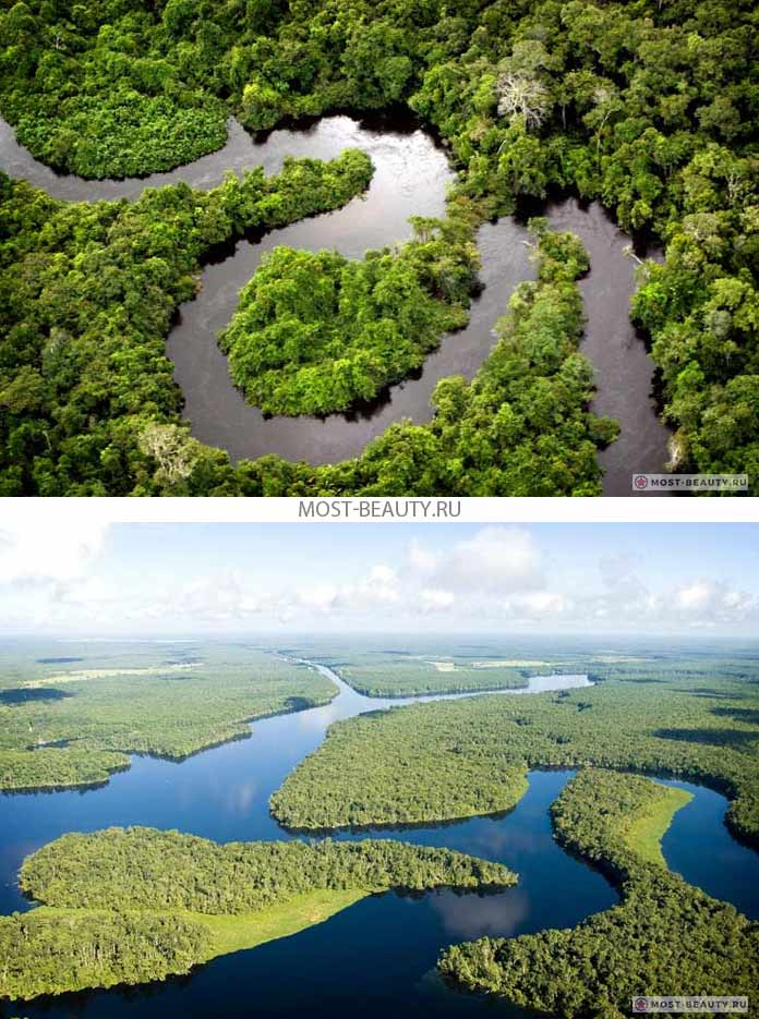 Самые красивые реки: Амазонка