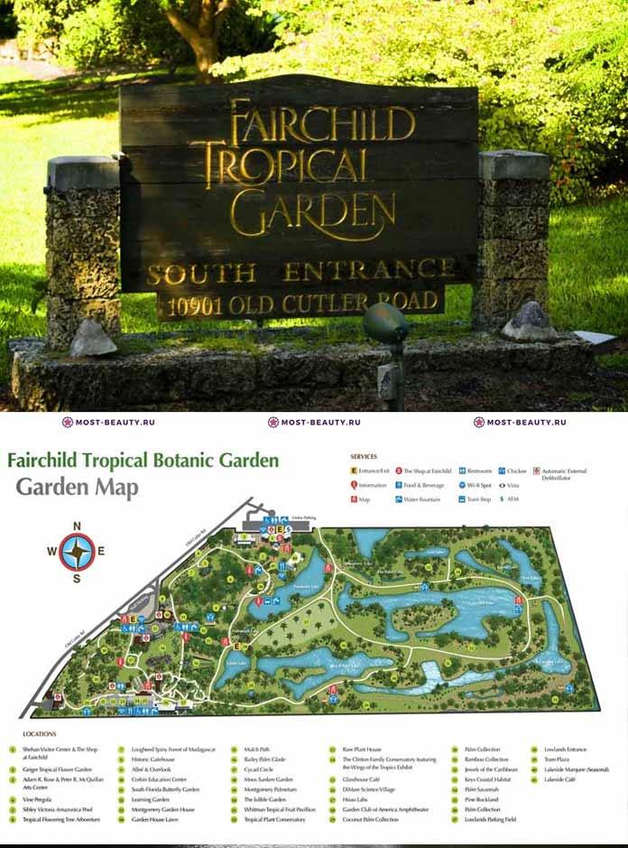 Самые красивые парки мира: Fairchild Tropical Garden