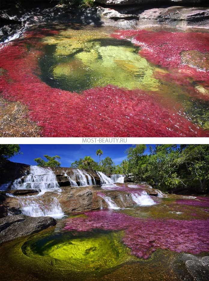 Самые красивые реки: Каньо-Кристалес
