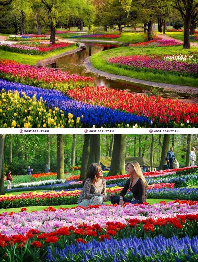 Самые красивые парки мира: Кёкенхоф