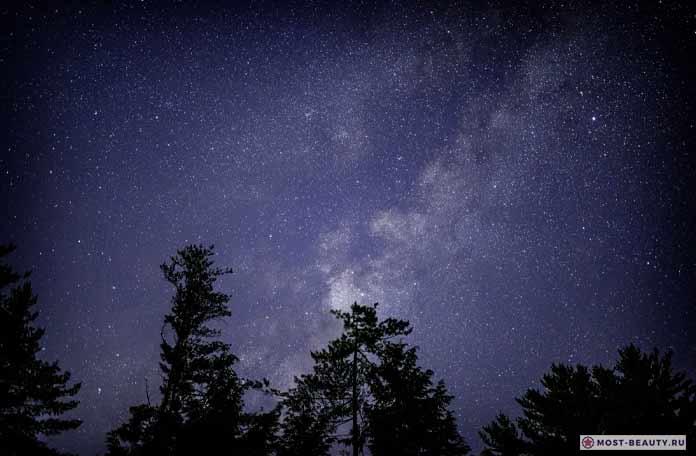 Удивительные и необычные звёзды. CC0