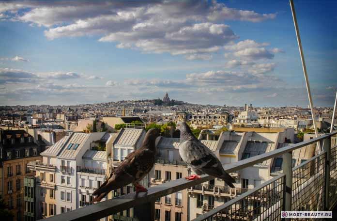 Париж. CC0