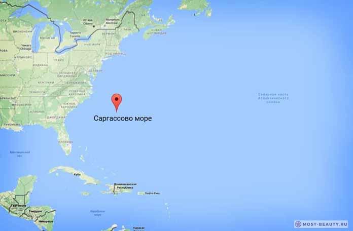 Самые красивые моря планеты: Саргассово море