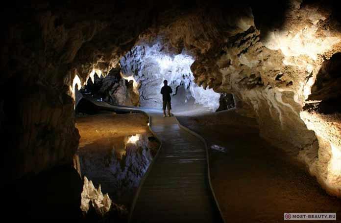 Самые красивые пещеры: Waitomo. Новая Зеландия