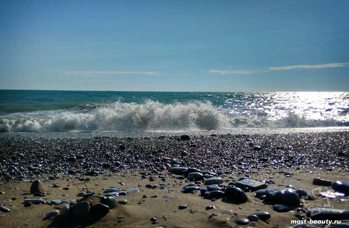 пляж дельфин лазаревское