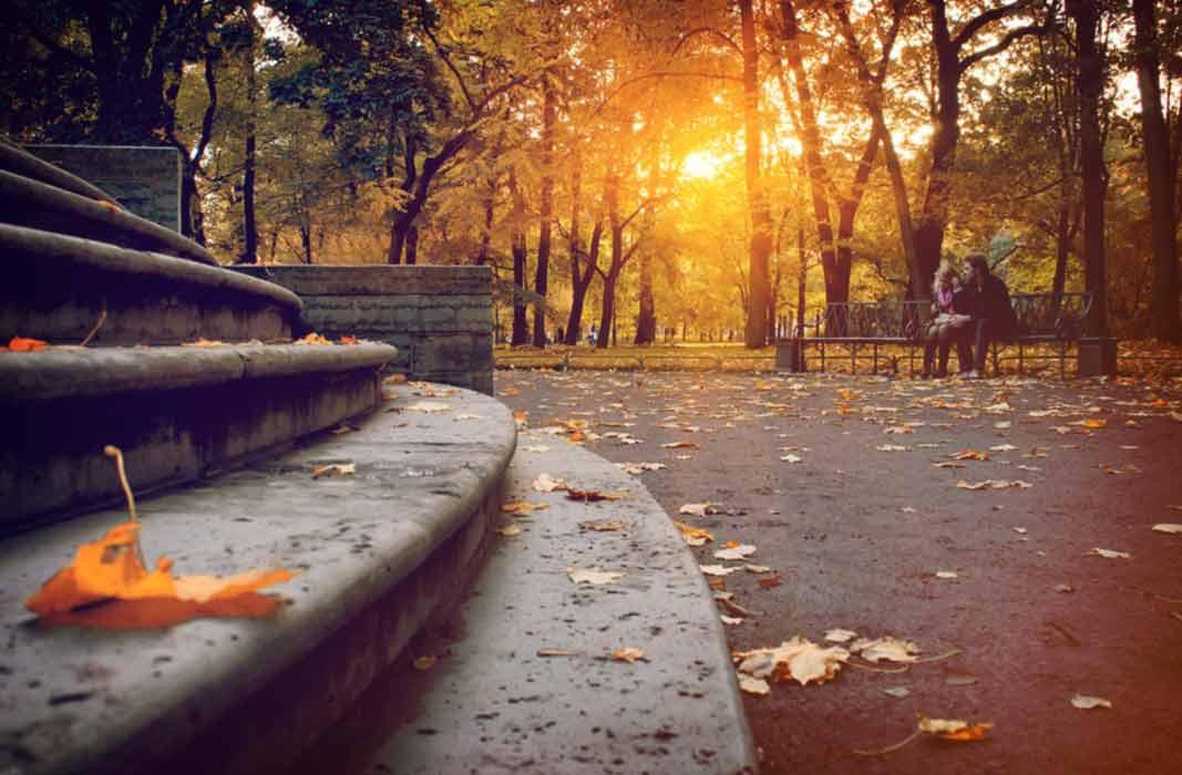 Михайловский парк