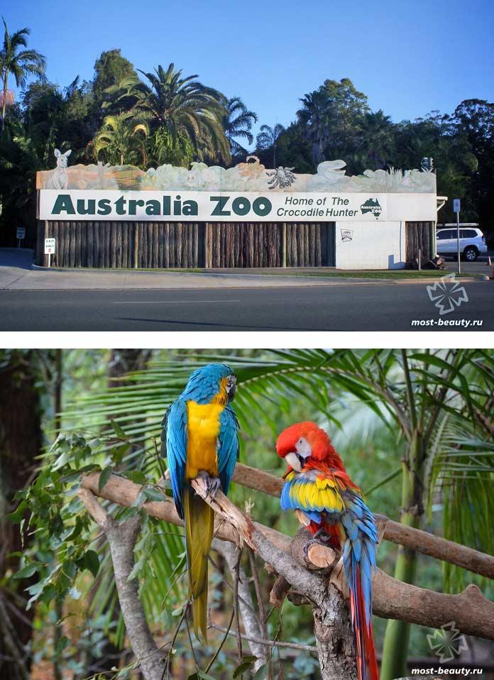 Самые красивые зоопарки: Австралийский зоопарк. CC0