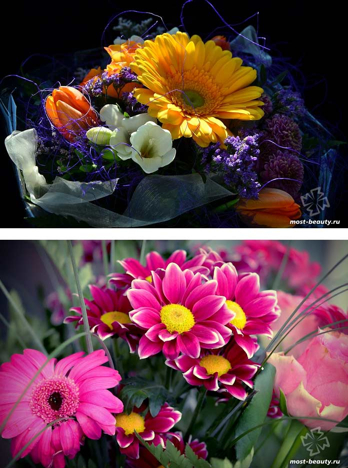 Букеты цветов. CC0