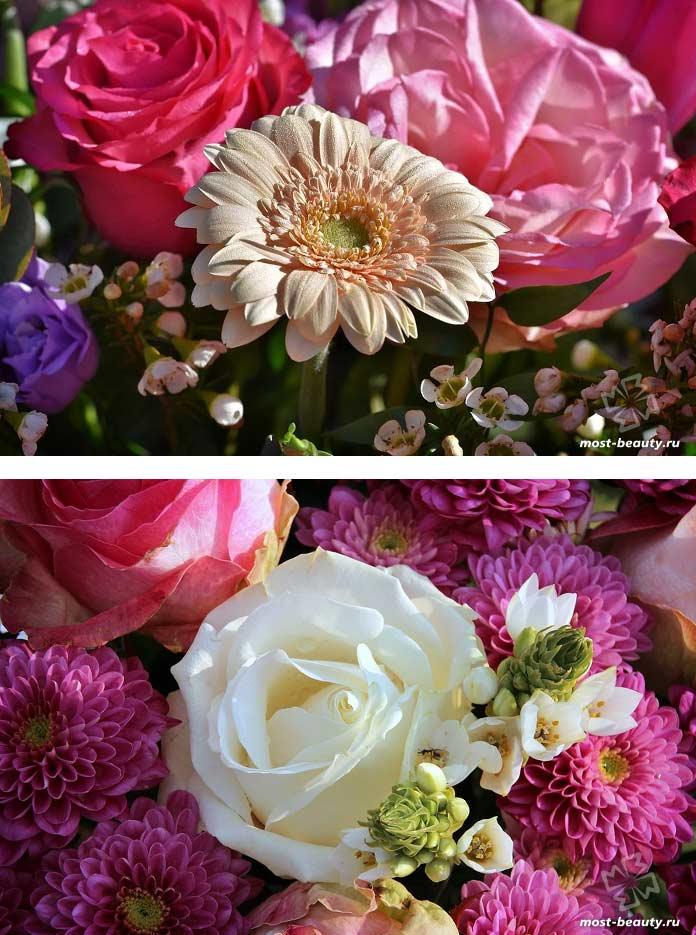 Очень красивые букеты цветов. CC0