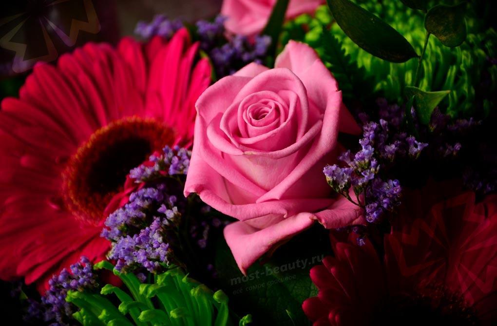 Самые красивые букеты цветов в мире! Более 50 фото букетов 💐