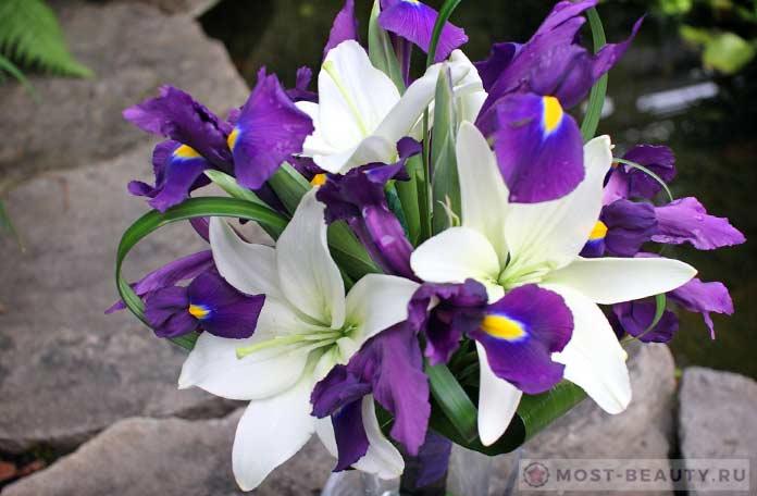 Самые невероятные букеты цветов мира фото, тез тур с доставкой в турцию с казахстана цветы торты