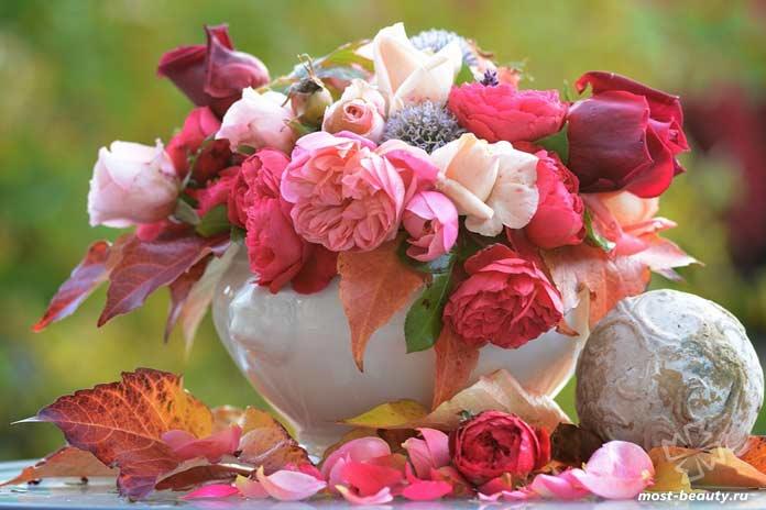 Красивый букет роз. CC0