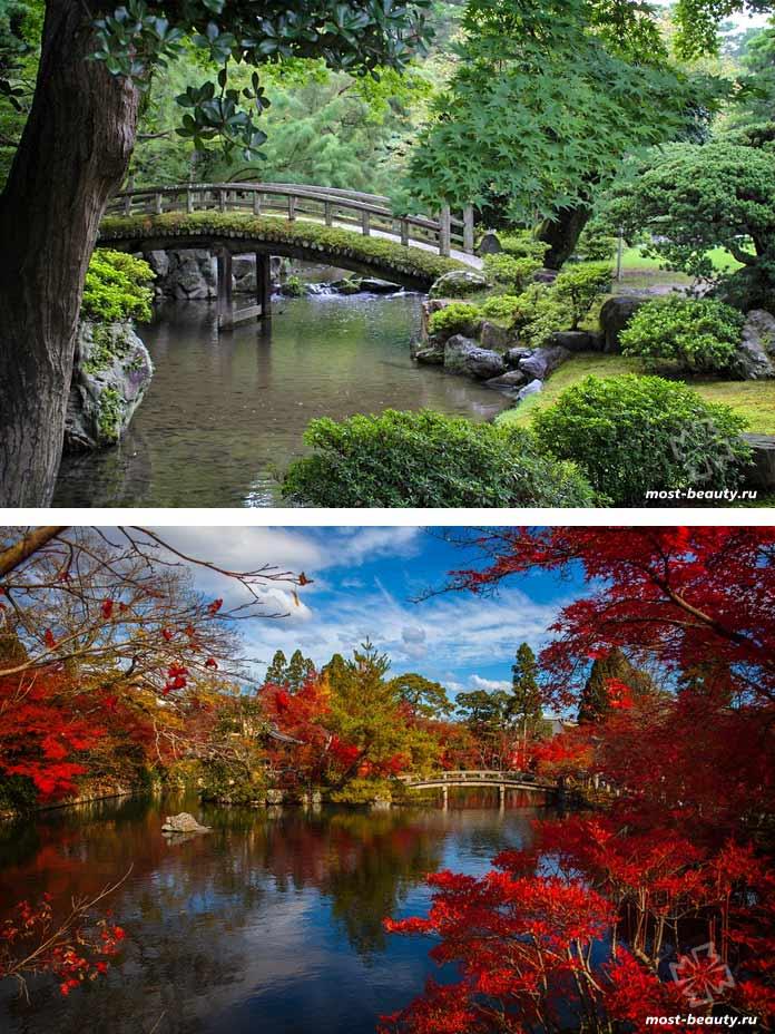 Японский сад. CC0