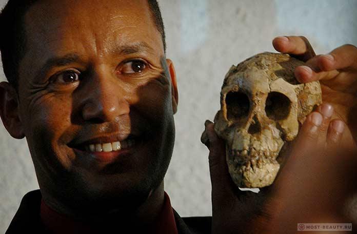 Удивительные археологические находки: Люси