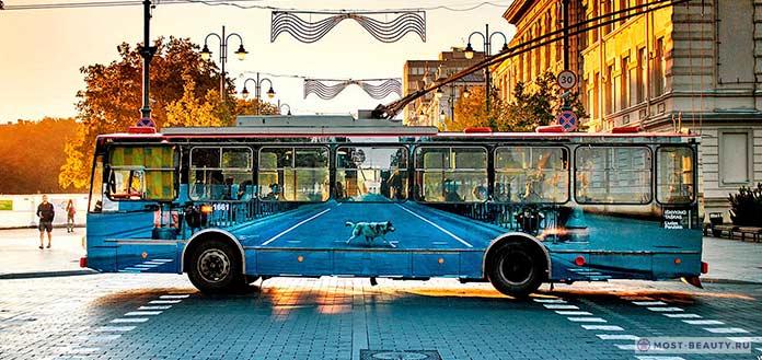 Прозрачный тролейбус