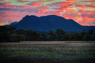 Самые высокие горы Австралии. CC0