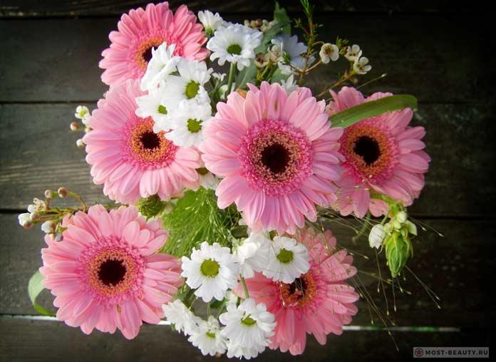 Розовые Герберы в букете