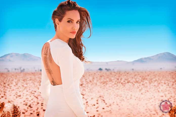 Поездки Джоли