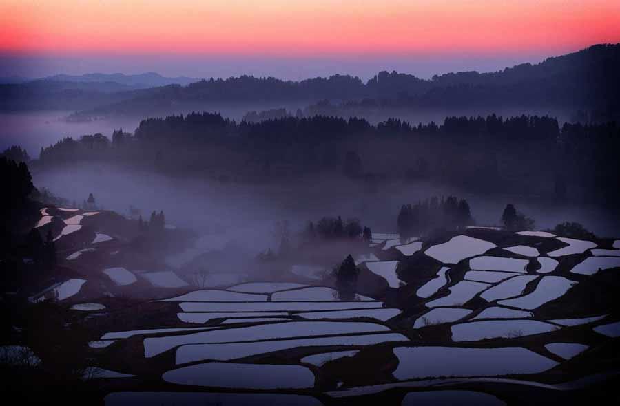 рисовая терраса в воде