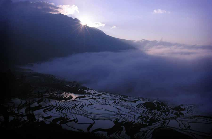 Фото рисовых террас