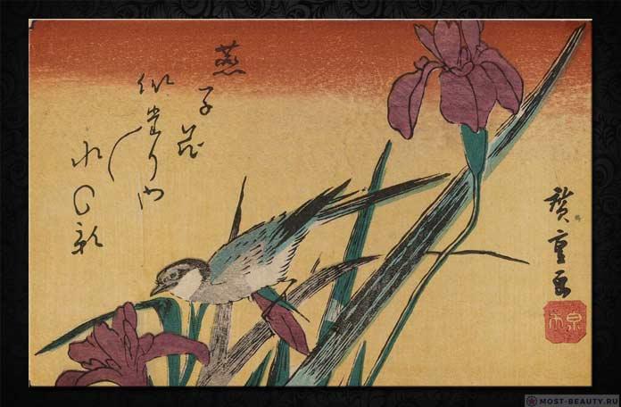 Утагава Хиросигэ - Трясогузка и ирисы
