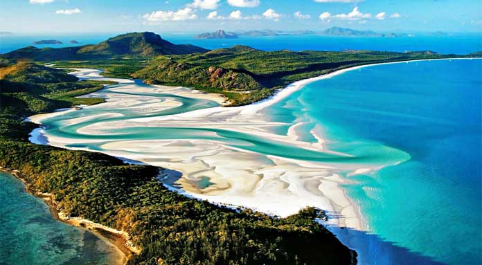 Насекомые Австралии