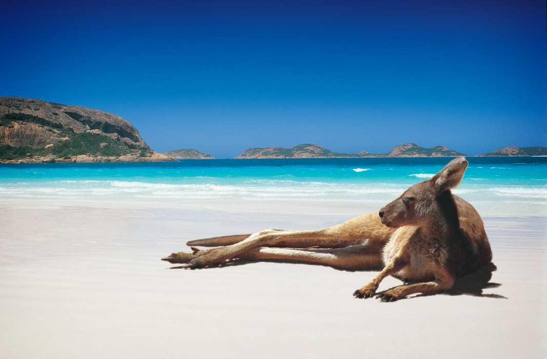Страна Австралия (описание фото)