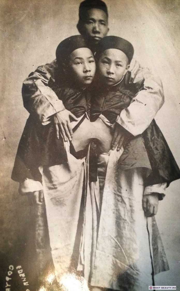 Лю Сенг-Сен и Лю Танг-Сен