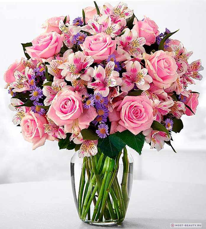 Роза сальстрёмерией