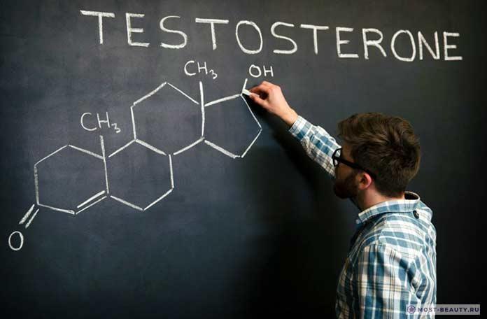 Самые интересные факты о тестостероне