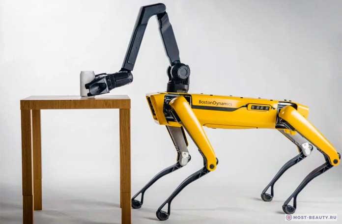 коммерческий робот