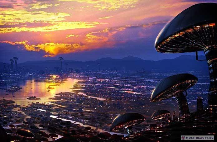 Грибные города