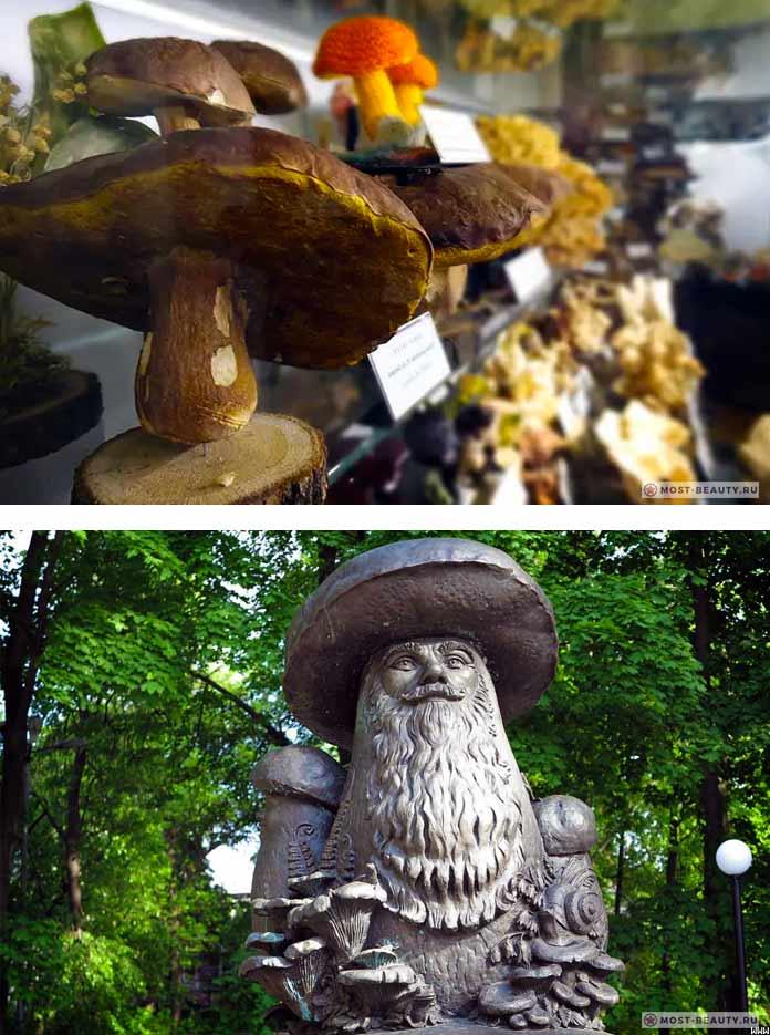 Музей и памятник грибу