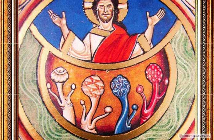 Теология грибов