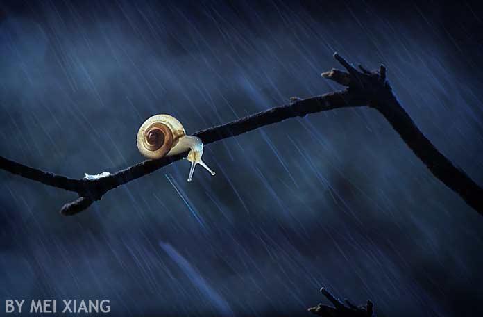 в дождливую ночь