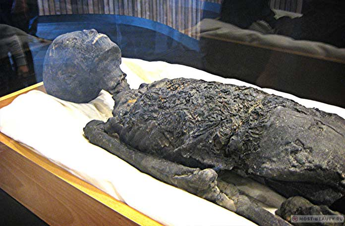 Мумия Тутанхомона