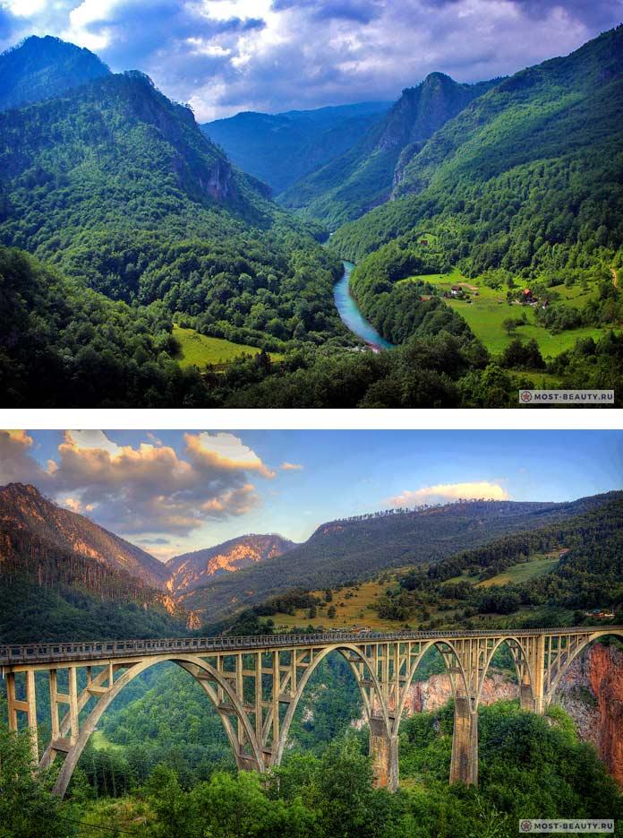 Каньон реки Тары - одно из самых красивых мест Черногории