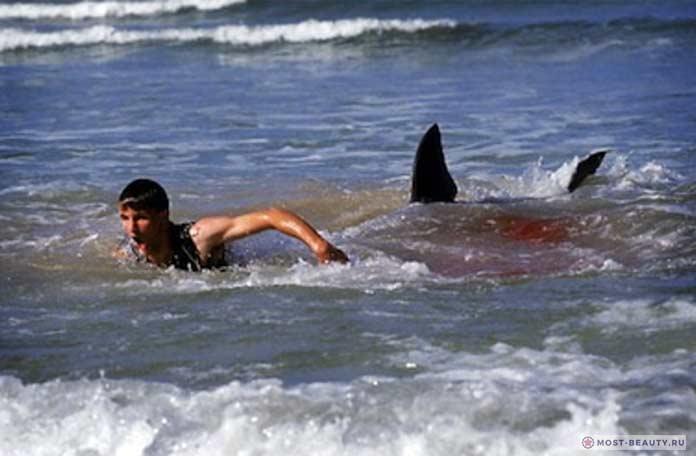 Самые интересные фильмы про акул: 12 дней страха