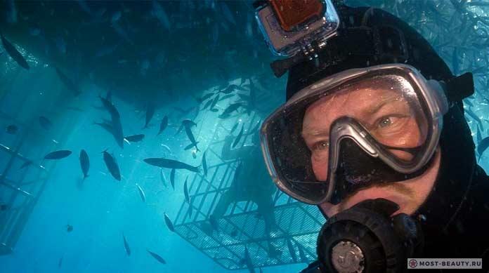 Лучшие фильмы про акул: Большой белый танец