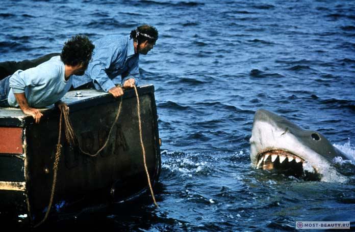 Самые интересные фильмы про акул: Челюсти