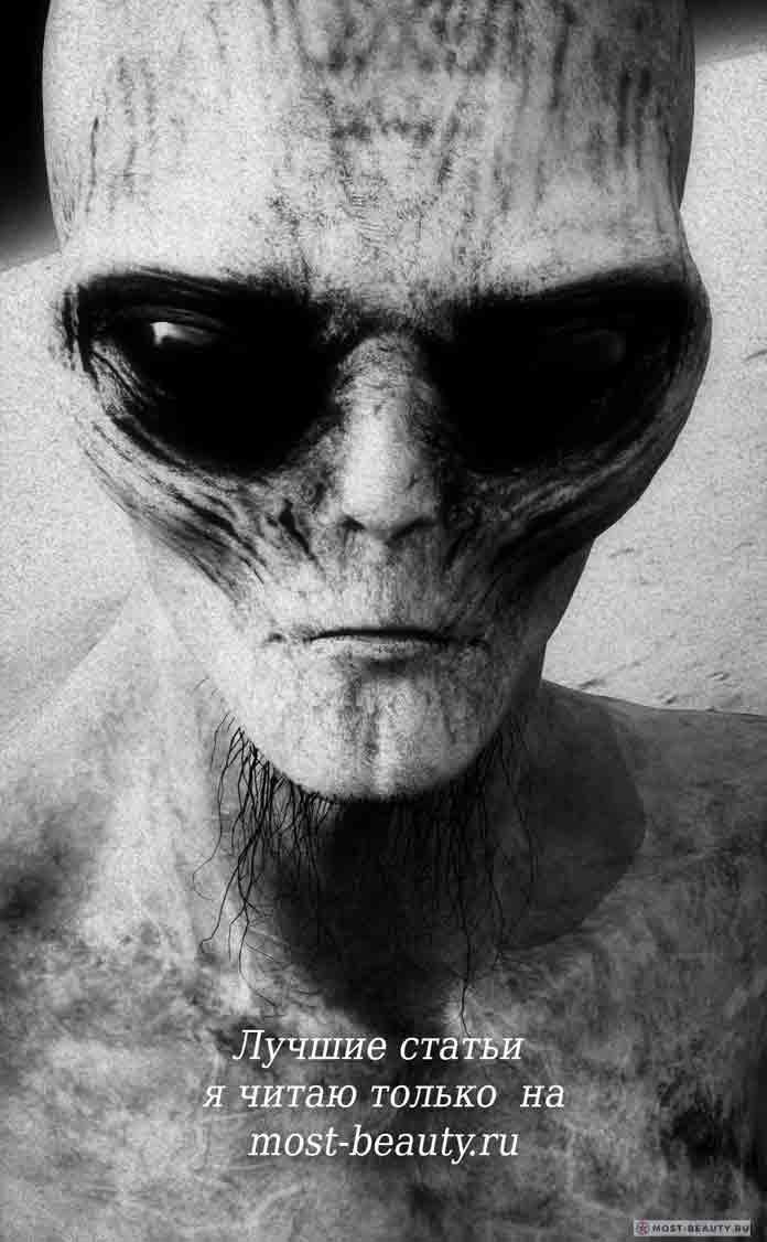 Инопланетянин. CC0
